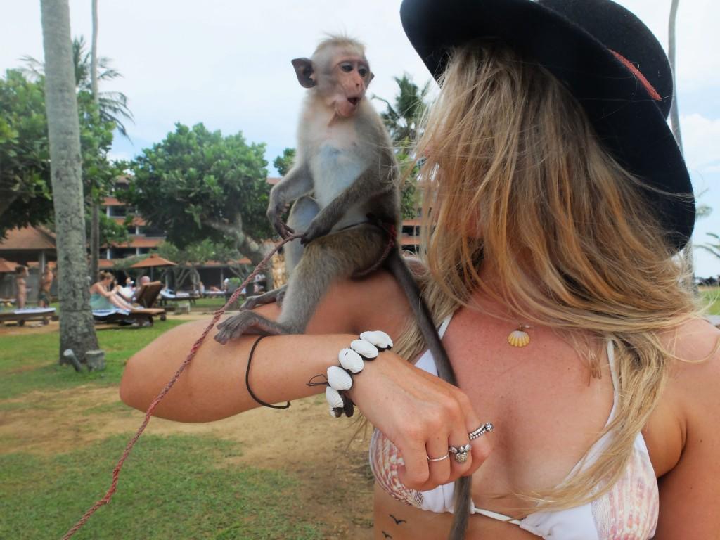 Natalie the monkey