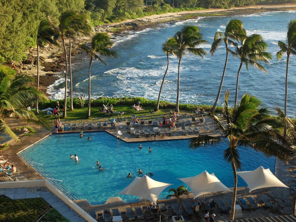 Turtle Bay View
